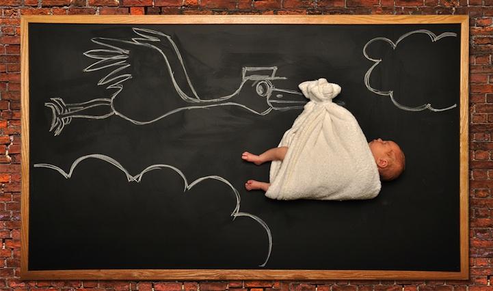 Na foto original, Anna e o marido retrataram seu filho sendo trazido por uma cegonha. (Foto: Divulgação/ Anna Eftimie)
