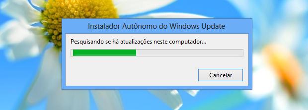 Instando atualização no Windows 8 (Foto: Reprodução/Helito Bijora)