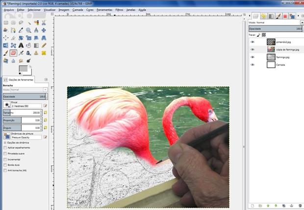 Imagem colorida parcialmente apagada, revelando contorno em P/B (Foto: Reprodução/Raquel Freire)