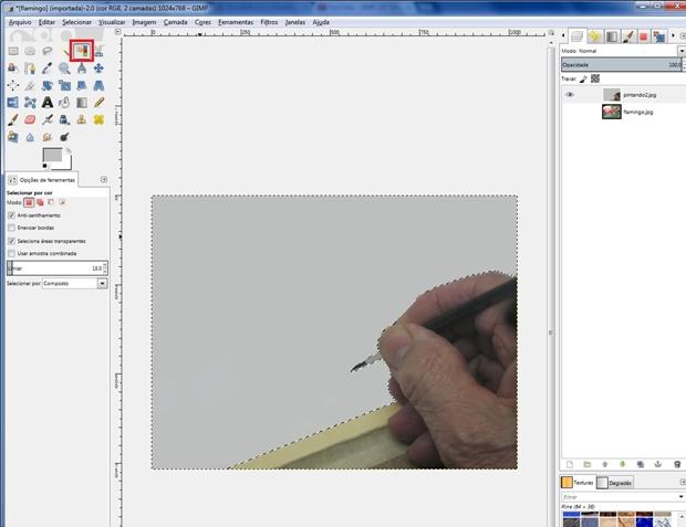 Cor branca selecionada com ferramenta de seleção por cor, em destaque (Foto: Reprodução/Raquel Freire)