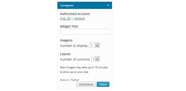 Configurando Widget do Instagram no WordPress (Foto: Aline Jesus/Reprodução)