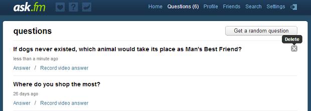 Perguntas feitas pelo Ask podem ser apagadas (Foto: Reprodução/Thiago Barros)