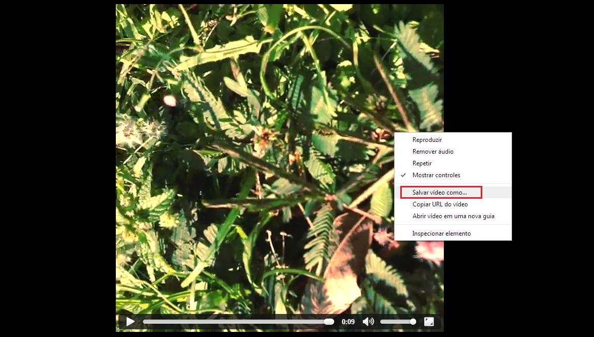 """Clique em """"Salvar Como"""" para salvar seu vídeo no computador (Foto: Reprodução/Gabriela Viana) (Foto: Clique em """"Salvar Como"""" para salvar seu vídeo no computador (Foto: Reprodução/Gabriela Viana))"""