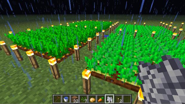 Cenouras e batatas são plantadas inteiras (Foto: Reprodução: Rafael Monteiro)