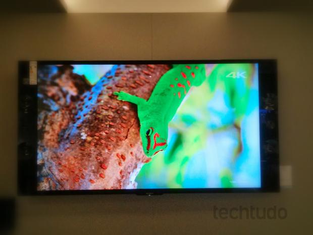 Sony X950, a TV 4K da Sony que traz beleza, bom processamento e som de alta qualidade (Foto: TechTudo/Rodrigo Bastos)