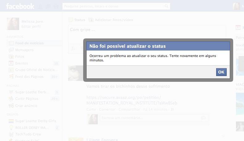 Facebook mostra tela de erro ao tentar atualizar status (Foto: Reprodução/Melissa Cruz)