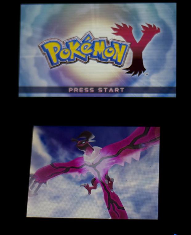 Pokémon X e Y: aprenda a deletar o save do jogo (Foto: Reprodução/Murilo Molina)
