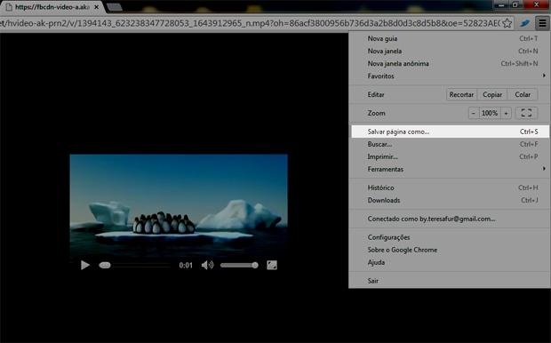 Salvando o vídeo (Foto: Reprodução/Teresa Furtado)