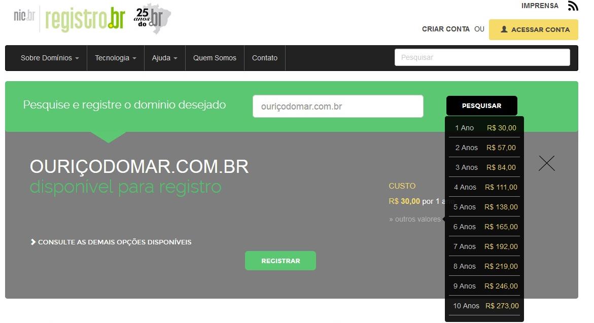 A disponibilidade do nome será exibida na tela do Registro.br (Foto: Reprodução/Barbara Mannara)