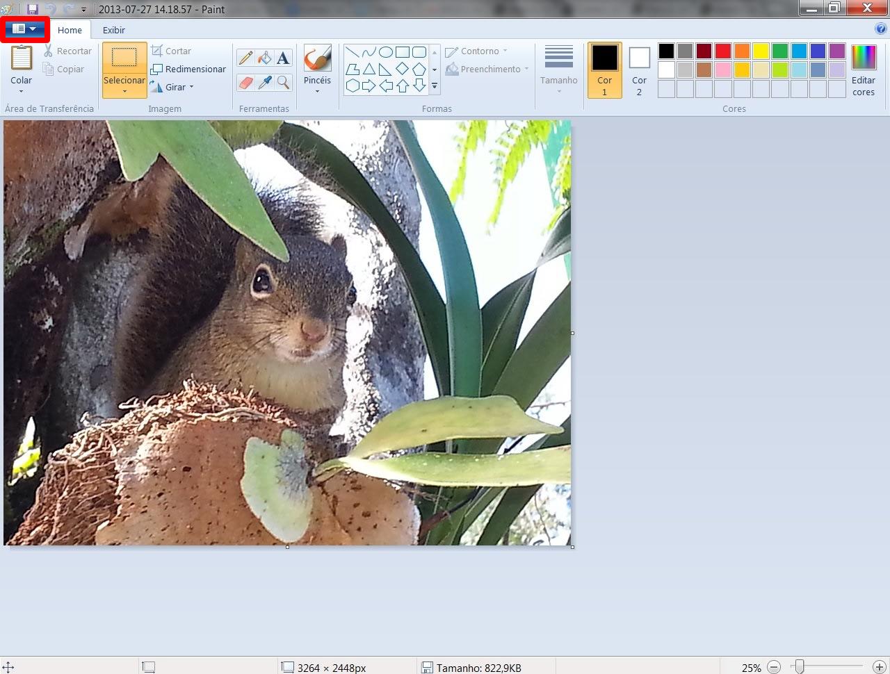 Com o arquivo de imagem aberto, clique no comando indicado (Foto: Reprodução/Daniel Ribeiro)