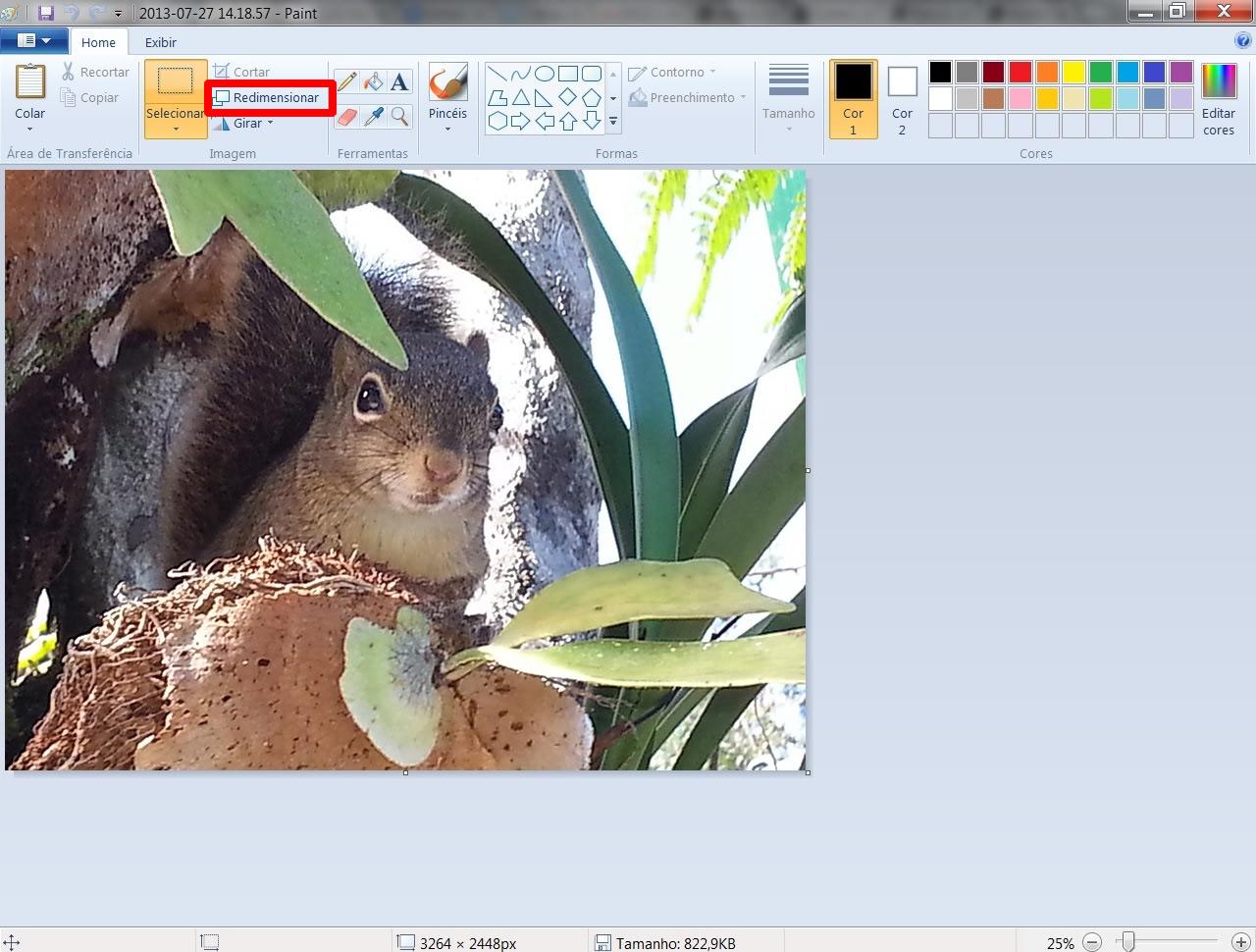 """Clique na opção """"Redimensionar"""", localizada na barra de recursos do programa (Foto: Reprodução/Daniel Ribeiro)"""
