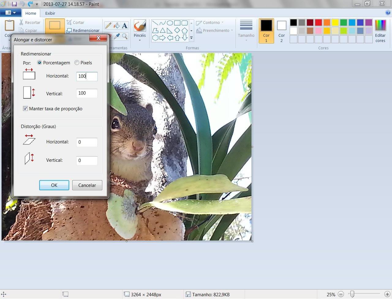 Altere o tamanho de sua imagem modificando a porcentagem de seu tamanho ou a quantidade de pixels (Foto: Reprodução/Daniel Ribeiro)