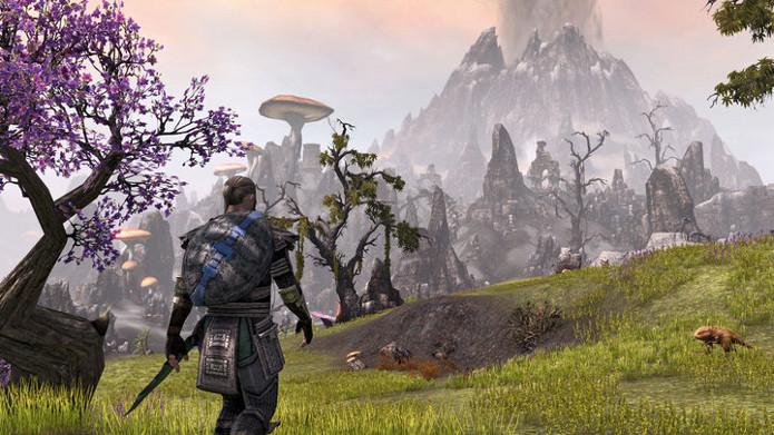 Aventuras e cooperatividade lhes aguardam em The Elder Scrolls Online (Imagem: Divulgação)