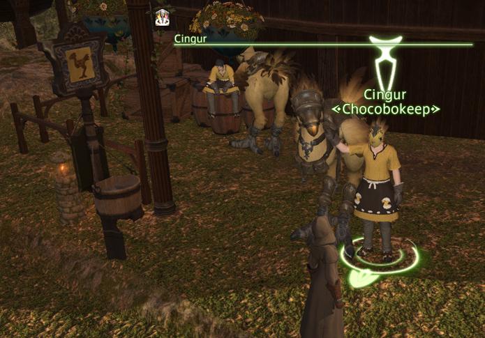 Fale com o NPC Chocobokeeper para conseguir seu Chocobo (Foto: Reprodução/Silas Tailer)