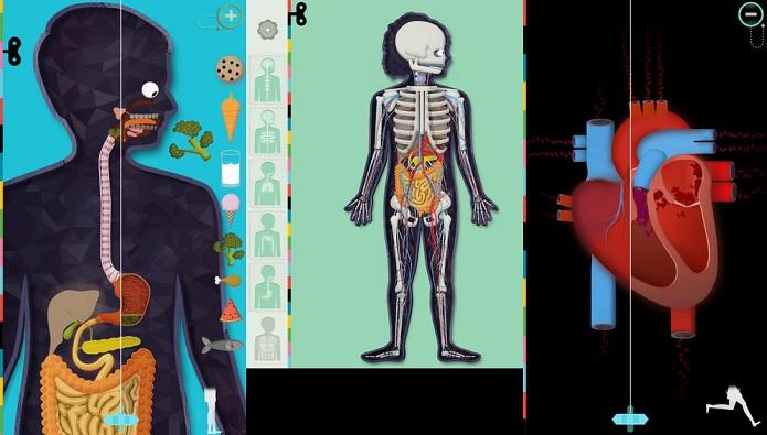Entenda melhor o funcionamento do corpo humano com esse app (Foto: Divulgação)