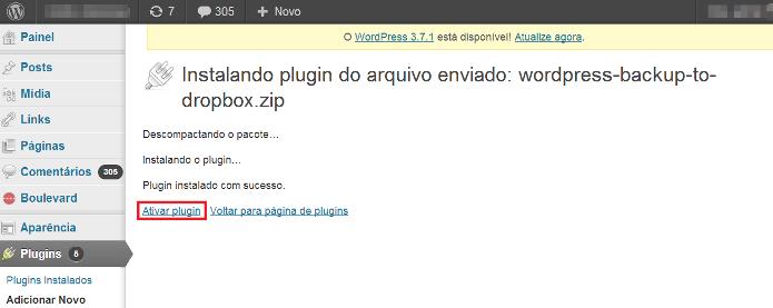 Ativando o plugin (Foto: Reprodução/Lívia Dâmaso)