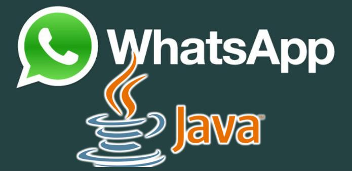 Versão do WhatsApp para celulares Java existe é compatível com celulares da Nokia (Foto: Montagem / Dario Coutinho)