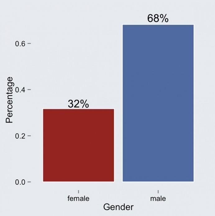 Os homens são maioria entre os visitantes estrangeiros que vieram para o Mundial (Foto: Reprodução/Facebook)