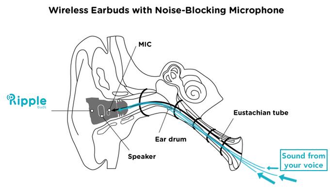 O som passa pela tuba auditiva direto para o microfone que está no canal auditivo. (Foto: Divulgação/RippleBuds)