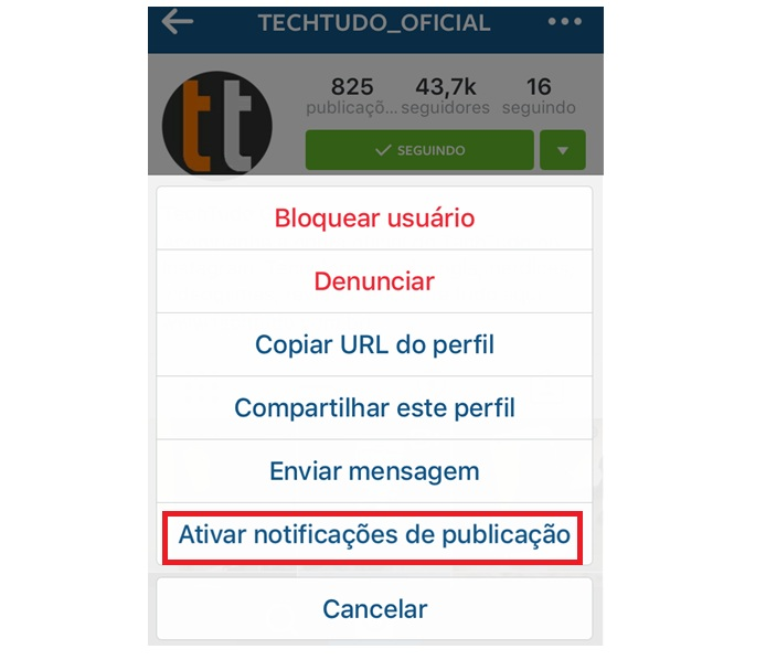 Ative notificações de publicação no Instagram dos perfis que quer ver primeiro (Foto: Reprodução/Gabriel Ribeiro)