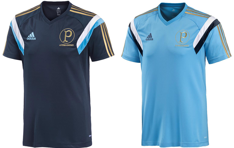 880a8d57b4916 Palmeiras lança camisa de treino com saudosismo e  cara de Argentina ...