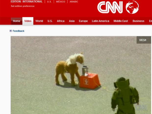 Imagens da TV local mostram o pônei de brinquedo, momentos antes da explosão.