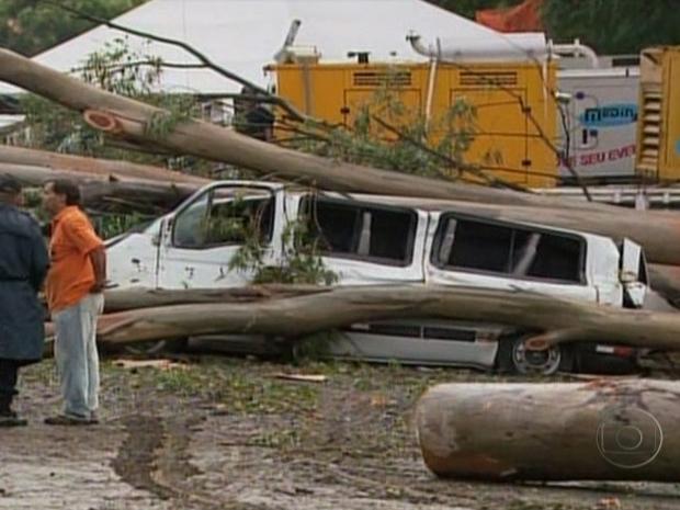 Árvore matou um e feriu três, segundo a PM (Foto: Reprodução/TV Globo)