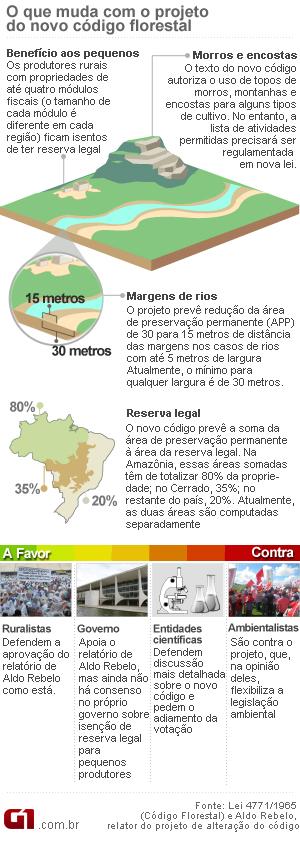 Arte Código Florestal 18h57 26/04 (Foto: Editoria de Arte / G1)