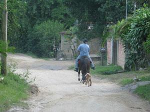 Moradores de Espraiados resistem às dificuldades e se dedicam à agricultura (Foto: Aluizio Freire)