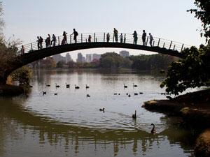 Parque Ibirapuera (Foto: Daigo Oliva/G1)