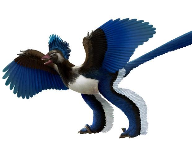 Ilustração mostra como seria o ancestral dos pássaros (Foto: Xing Lida and Liu Yi )