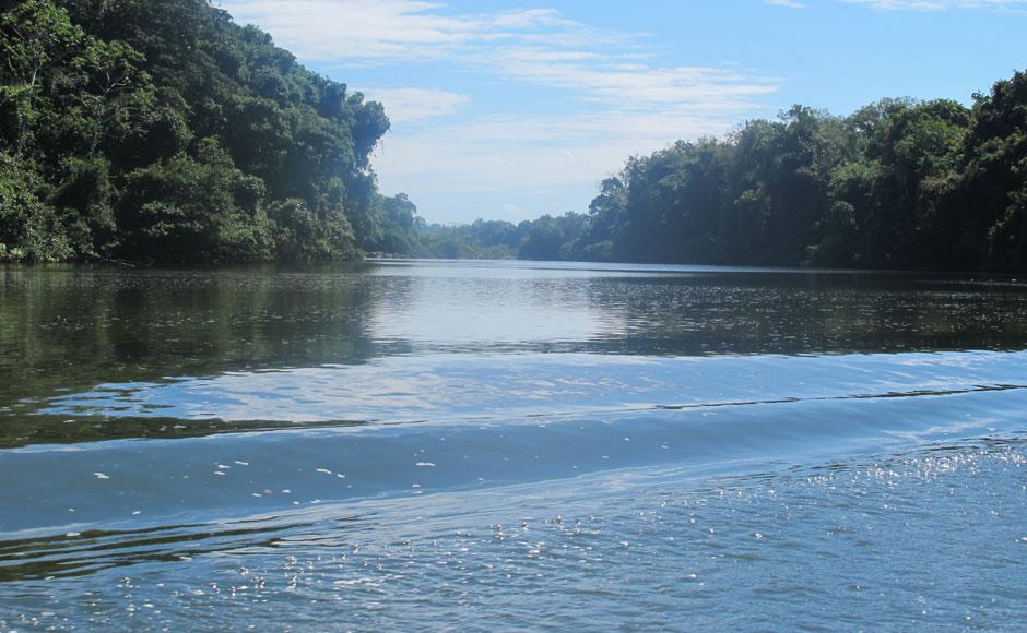 G1 - Veja imagens do rio Xingu, no Pará, que abrigará ...