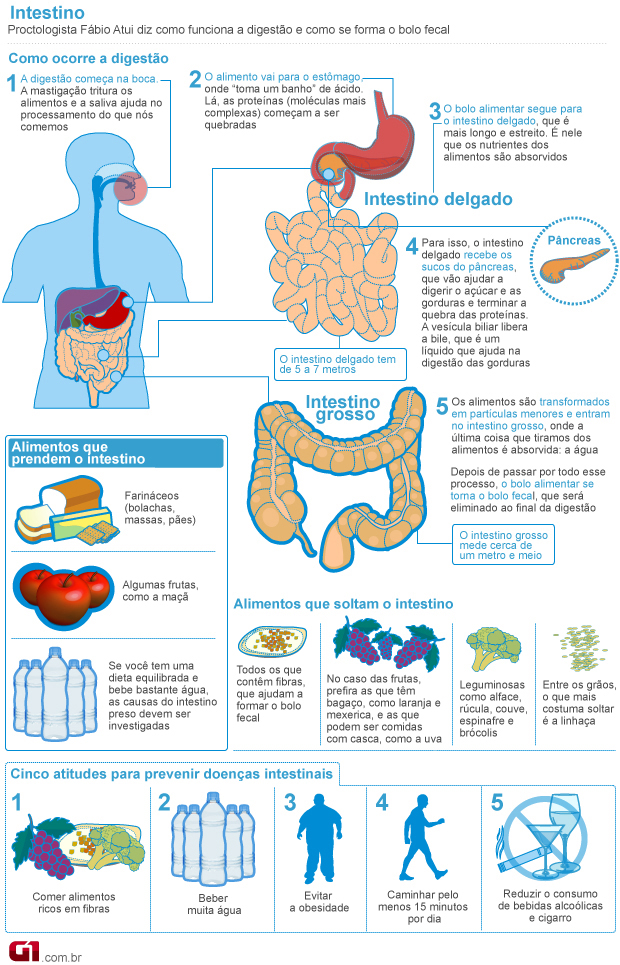 dieta para intestino constipado