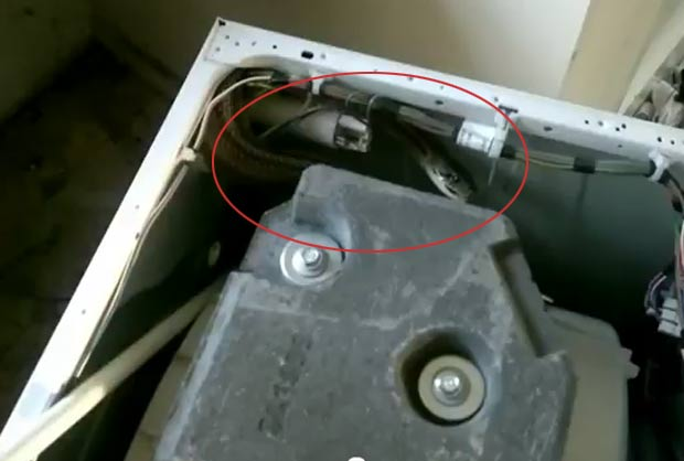 Cobra de estimação ficou presa em máquina de lavar roupa. (Foto: Reprodução)