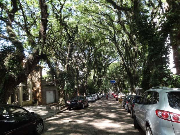 Catarina de sao goncalo rj rua 6 - 4 10