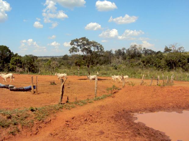 Produtor é multado em R  20 mil por causa de erosão em fazenda em MS.  Erosão causou degradação de Área de Preservação Permanente (APP). 15649a250b
