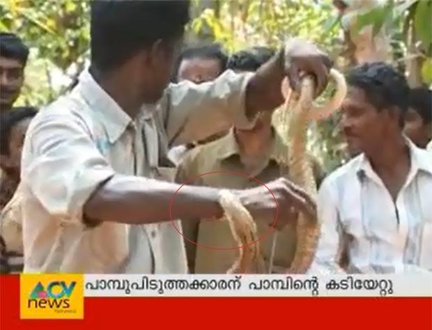 Vava Suresh se distraiu e acabou atacado pela cobra-rei. (Foto: Reprodução/YouTube)