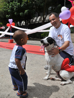 Mais de 70 animais são adotados em feira em SP