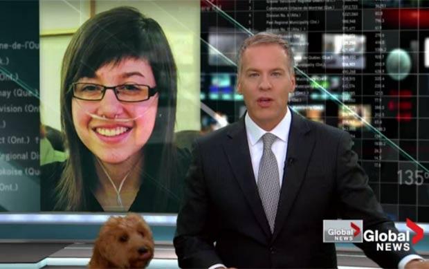 Cão aparece durante um programa ao vivo