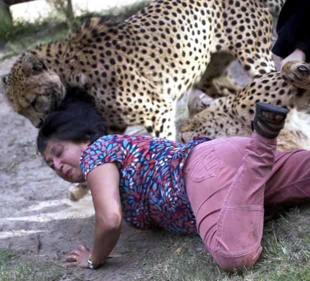 Violet D'Mello foi atacada por dois guepardos em parque na África do Sul. (Foto: Archibald D'Mello/AP)