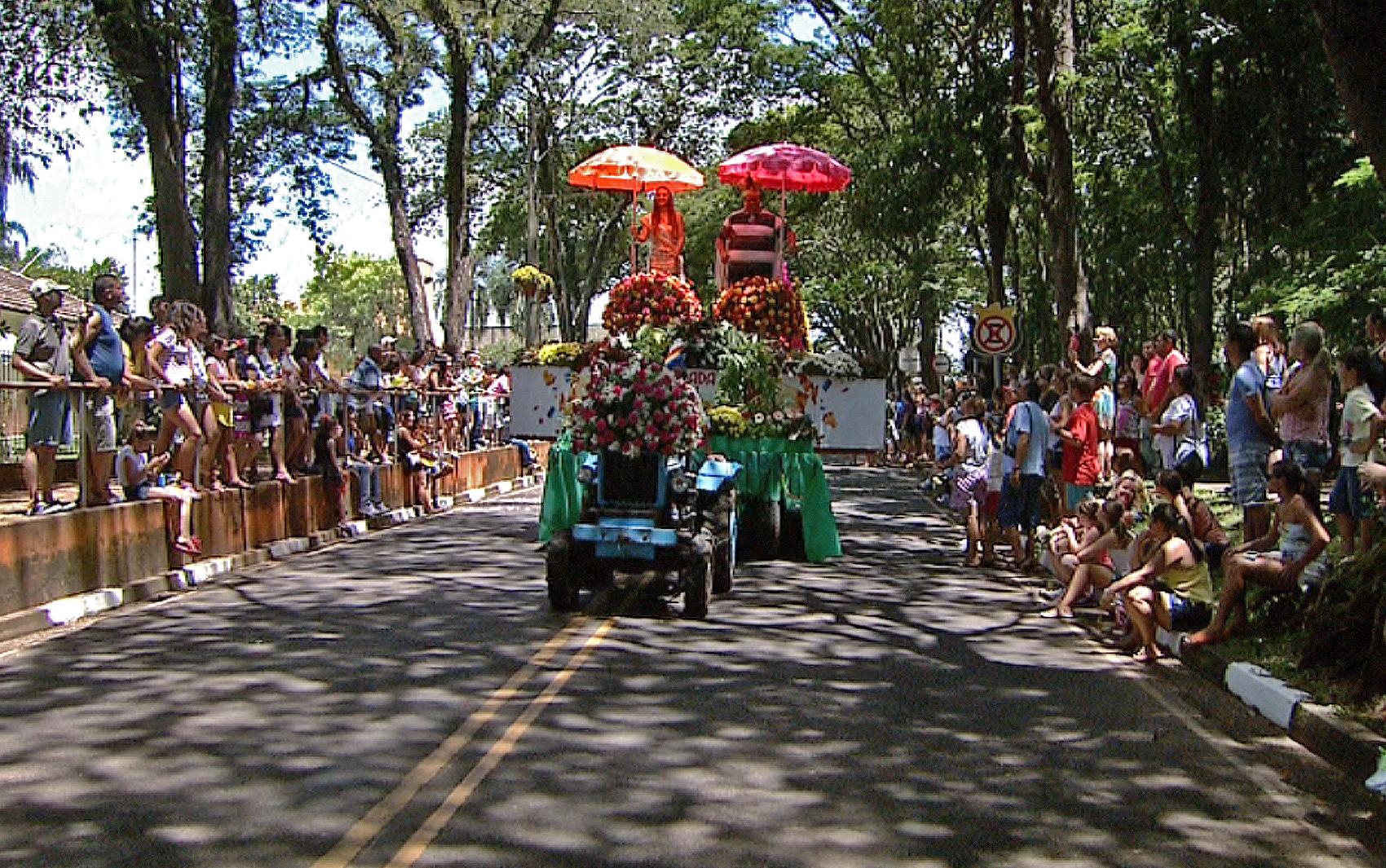 Diretor De Carnaval Deixa Tradicional Escola De Sp: FOTOS: Carnaval Em Holambra, SP, Tem Carros Decorados Com