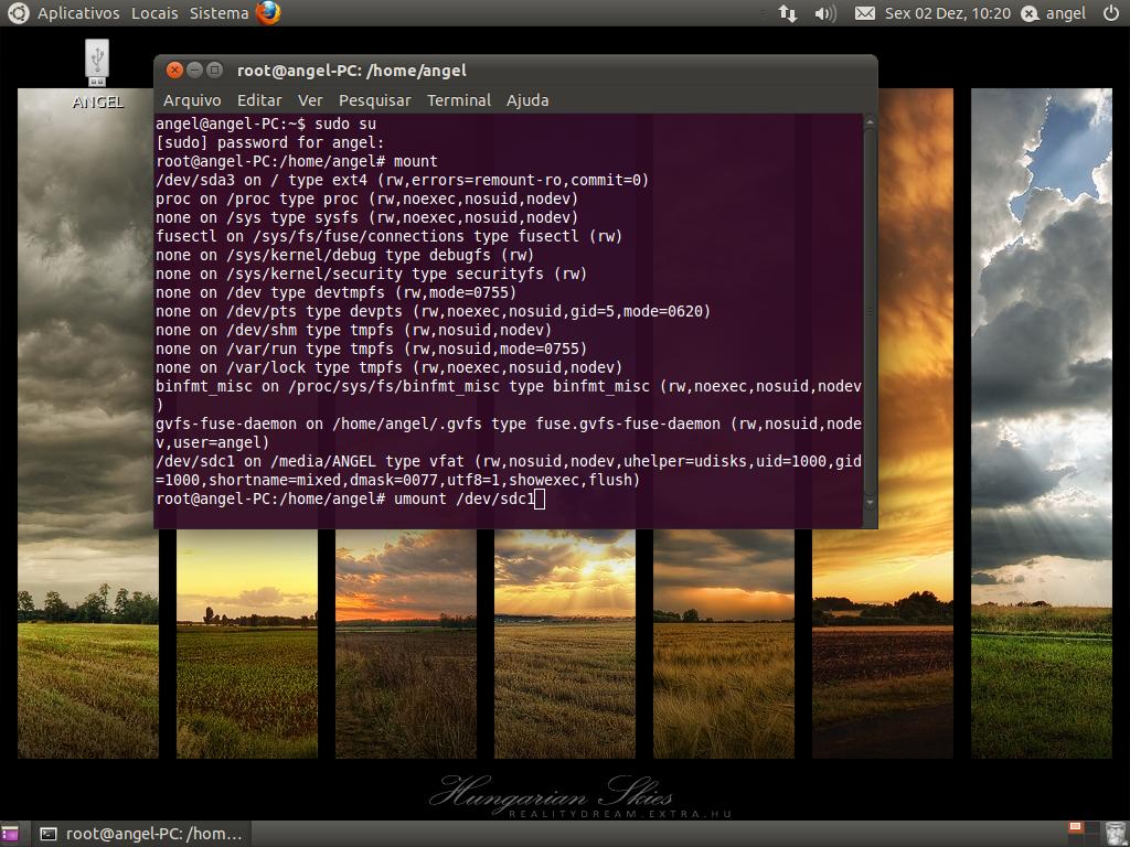 Montando o pen drive no Linux (Foto: Reprodução/Claudia Sardinha)