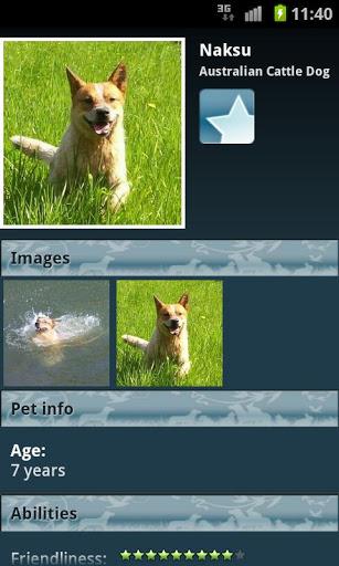 Saiba tudo sobre raças de cães e entre em uma rede social canina com o Dog Breeds (Foto: Reprodução/ Google Play)