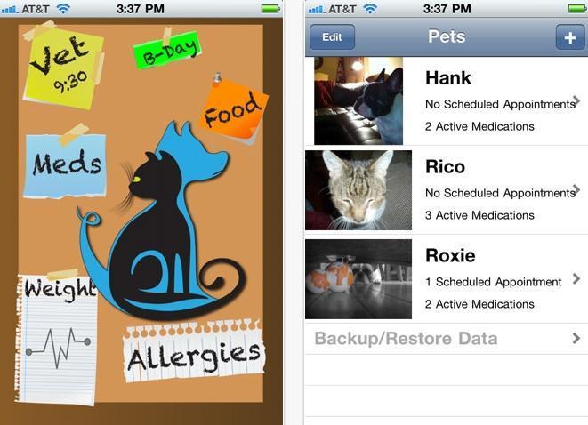 Organize a vida de seu cão com o Pet Phone (Foto: Reprodução/ Mashable) (Foto: Organize a vida de seu cão com o Pet Phone (Foto: Reprodução/ Mashable))