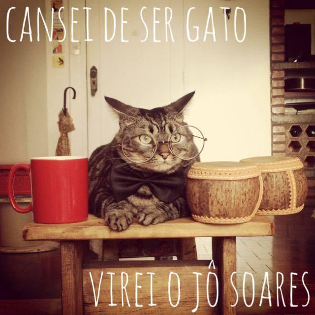 Cansei de ser gato_virei o Jo Soares_11set2013