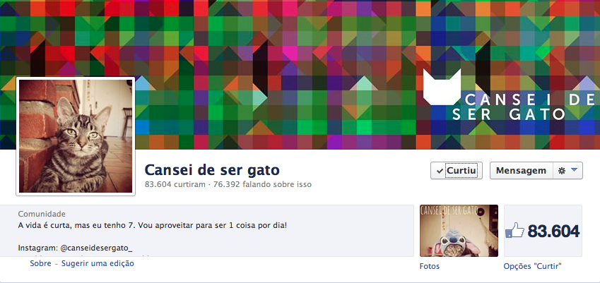 Cansei de Ser Gato é sucesso no Facebook (Foto: Reprodução/Internet)